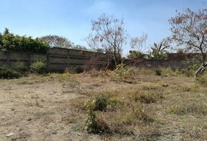 Foto de terreno habitacional en venta en privada de tulipán campo las victorias , tabachines, yautepec, morelos, 10931590 No. 01