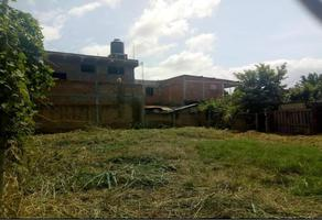 Foto de terreno habitacional en venta en privada guanajuato 224, las mojoneras, puerto vallarta, jalisco, 19468782 No. 01