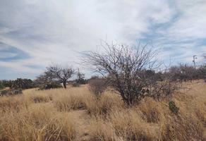 Foto de terreno habitacional en venta en privada las palmas, agua señora , el palmar 2, mexquitic de carmona, san luis potosí, 0 No. 01