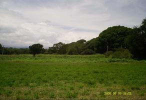 Foto de terreno habitacional en venta en privada laureles 00, san francisco javier, santa cruz xoxocotlán, oaxaca, 8875489 No. 01
