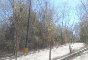 Foto de terreno habitacional en venta en privada los amapas 11, mazatlan i, mazatlán, sinaloa, 8533183 No. 01