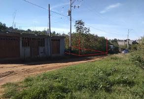Foto de terreno habitacional en venta en privada los jimenez 5, paraje los pintos, san lorenzo cacaotepec, oaxaca, 8539388 No. 01