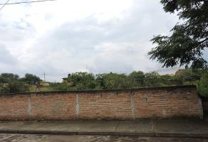 Foto de terreno habitacional en venta en privada mariano barcenas , santa cruz del valle, tlajomulco de zúñiga, jalisco, 3735685 No. 01