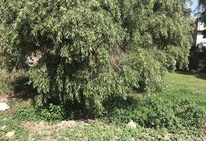 Foto de terreno habitacional en venta en privada morelos 28, miguel abed, puebla, puebla, 13282828 No. 07
