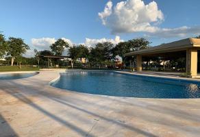 Foto de terreno habitacional en venta en privada oasis 100, yucatan, mérida, yucatán, 0 No. 01