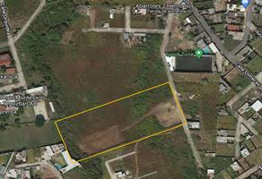 Foto de terreno habitacional en venta en privada olivos 3, ahuatepec, cuernavaca, morelos, 0 No. 01
