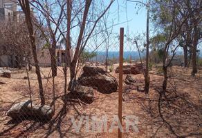 Foto de terreno habitacional en venta en privada pedro ferriz , puerto escondido centro, san pedro mixtepec dto. 22, oaxaca, 0 No. 01
