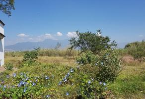 Foto de terreno habitacional en venta en privada rancho escondido 1 , oaxaca centro, oaxaca de juárez, oaxaca, 10578218 No. 01