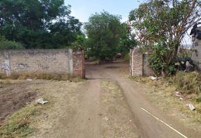 Foto de terreno comercial en venta en privada , san martín de las flores de abajo, san pedro tlaquepaque, jalisco, 15169179 No. 01