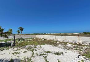 Foto de terreno comercial en venta en  , progreso de castro centro, progreso, yucatán, 0 No. 01