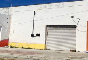 Foto de local en renta en  , progreso de castro centro, progreso, yucatán, 5661730 No. 01