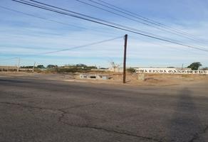 Foto de terreno habitacional en venta en progreso , loma linda, mexicali, baja california, 19420496 No. 01