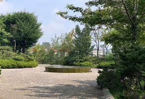 Foto de terreno habitacional en venta en prolongación 16 de septiembre , contadero, cuajimalpa de morelos, df / cdmx, 13463205 No. 01