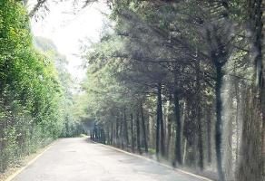 Foto de terreno habitacional en venta en prolongación 16 de septiembre , contadero, cuajimalpa de morelos, df / cdmx, 14175118 No. 01