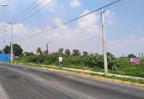 Foto de terreno comercial en venta en prolongacion 8 de julio , san sebastián el grande, tlajomulco de zúñiga, jalisco, 0 No. 01