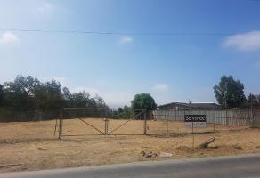 Foto de terreno habitacional en venta en prolongacion calle ruiz 100, benito juárez, ensenada, baja california, 0 No. 01