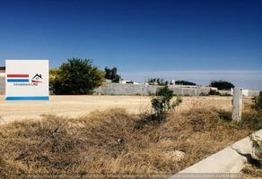 Foto de terreno habitacional en venta en prolongación fundadores, sabinas, coahuila, 26740 , fundadores, sabinas, coahuila de zaragoza, 0 No. 01