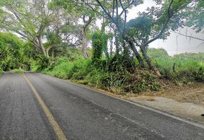 Foto de terreno habitacional en venta en prolongación hidalgo , chivato, villa de álvarez, colima, 15739791 No. 01