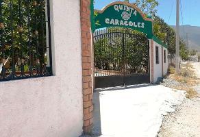 Foto de rancho en venta en prolongación juan dávila , san isidro, arteaga, coahuila de zaragoza, 0 No. 01