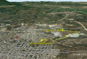 Foto de terreno habitacional en venta en prolongación manuel m. dieguez , la higuera, tala, jalisco, 3585365 No. 01