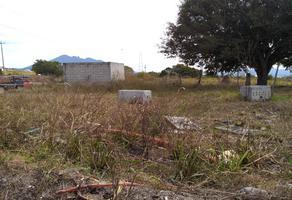 Foto de terreno habitacional en venta en prolongacion parque chapultepec 1, paseo del valle real, tepic, nayarit, 8622110 No. 01