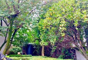 Foto de casa en venta en prolongación san pablo , san bernabé ocotepec, la magdalena contreras, df / cdmx, 18117183 No. 01