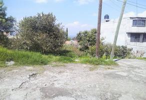Foto de terreno habitacional en venta en prolongación vicente , del carmen, xochimilco, df / cdmx, 0 No. 01