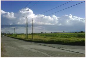 Foto de terreno habitacional en venta en  , puebla (hermanos serdán), huejotzingo, puebla, 0 No. 01