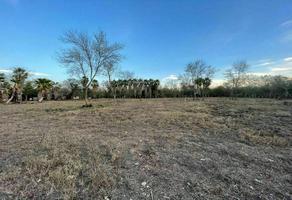 Foto de terreno habitacional en venta en pueblo escobedo , matamoros, montemorelos, nuevo león, 0 No. 01