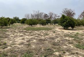 Foto de terreno habitacional en venta en  , pueblo nuevo, cadereyta jiménez, nuevo león, 0 No. 01