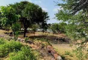 Foto de terreno habitacional en venta en  , pueblo nuevo, león, guanajuato, 11833105 No. 01