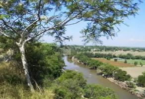 Foto de terreno comercial en venta en puente de ixtla/ título de agua, -precio a negociar- , tilzapotla, puente de ixtla, morelos, 15106922 No. 01