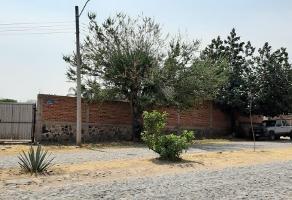 Foto de terreno habitacional en venta en puente de las flores , jardines de la calera, tlajomulco de zúñiga, jalisco, 0 No. 01