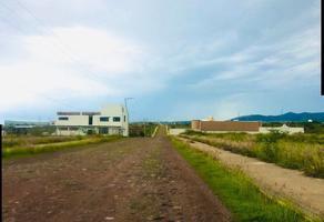 Foto de terreno comercial en venta en puentecillas , cerrito del oro, guanajuato, guanajuato, 0 No. 01