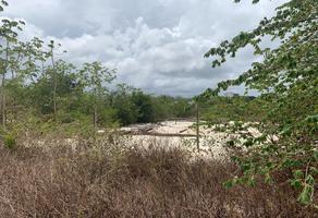 Foto de terreno industrial en renta en  , puerto aventuras, solidaridad, quintana roo, 0 No. 01