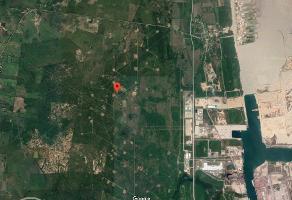 Foto de terreno habitacional en venta en  , puerto industrial de altamira, altamira, tamaulipas, 11818367 No. 01