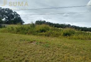 Foto de terreno habitacional en renta en  , puerto industrial de altamira, altamira, tamaulipas, 17635897 No. 01