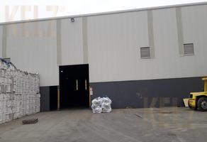 Foto de bodega en renta en  , puerto industrial de altamira, altamira, tamaulipas, 0 No. 01