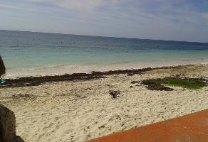 Foto de terreno comercial en venta en puerto morelos , puerto morelos, benito juárez, quintana roo, 3451631 No. 01