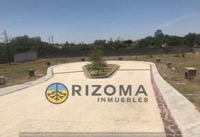 Foto de terreno habitacional en venta en pulque , yerbabuena, guanajuato, guanajuato, 14888910 No. 01