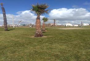 Foto de terreno habitacional en venta en punta azul, calle playa pacifico , la barca, playas de rosarito, baja california, 0 No. 01