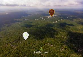 Foto de terreno habitacional en venta en punta maya , dzidzilché, mérida, yucatán, 0 No. 01