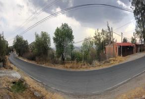 Foto de terreno habitacional en venta en purificación , la purificación tepetitla, texcoco, méxico, 0 No. 01