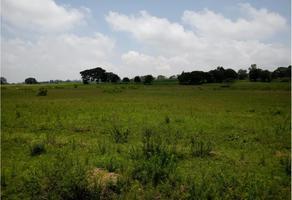 Foto de terreno habitacional en venta en qro 400, querétaro terrenos campestres, amealco de bonfil centro, amealco de bonfil, querétaro, 0 No. 01