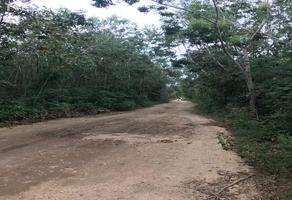 Foto de terreno industrial en venta en quelite , leona vicario, felipe carrillo puerto, quintana roo, 0 No. 01