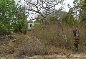 Foto de terreno comercial en venta en quinta cruz , altamira centro, altamira, tamaulipas, 0 No. 01