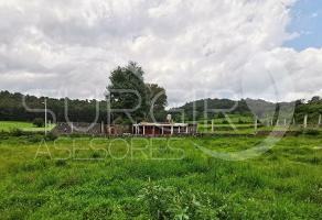 Foto de terreno habitacional en venta en  , quiroga, quiroga, michoacán de ocampo, 8216373 No. 01