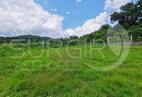 Foto de terreno habitacional en venta en  , quiroga, quiroga, michoacán de ocampo, 8216380 No. 01