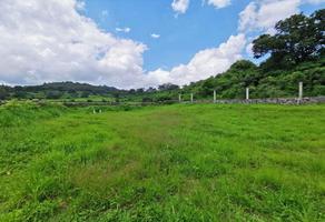 Foto de terreno habitacional en venta en  , quiroga, quiroga, michoacán de ocampo, 8234136 No. 01