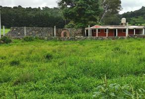Foto de terreno habitacional en venta en  , quiroga, quiroga, michoacán de ocampo, 8248844 No. 01